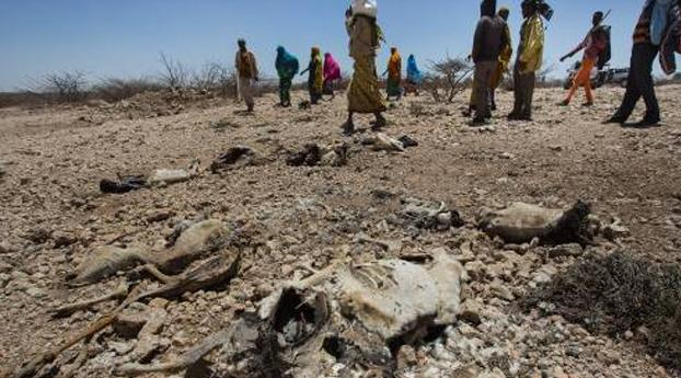 Rode Kruis waarschuwt voor hongersnood